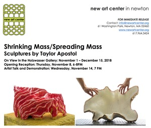 Solo exhibition at New Art Center